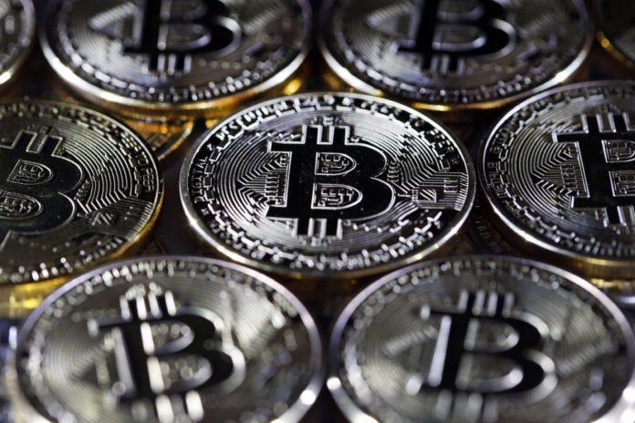 Bitcoins pictures of butterflies guy bettinger kirkland wa